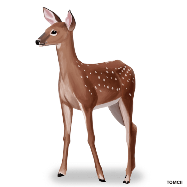 Here's a quick painting of a cute deer! I love painting them, they are quite calming.