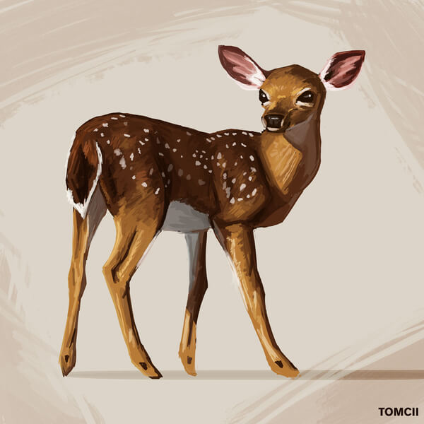 Animals such as deers are so intriguing and fun for me to paint. Their agile shape, their vibrant brown orange colors, and their dynamic make these creatures a lot of fun to paint.